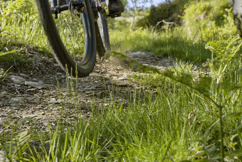 foto-di-una-bicicletta-in-movimento-sul-sentiero